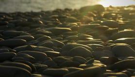 Χαλίκια στην παραλία Στοκ Εικόνες