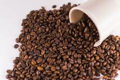 Χαλαρά φασόλια καφέ στο άσπρο υπόβαθρο στοκ φωτογραφία με δικαίωμα ελεύθερης χρήσης