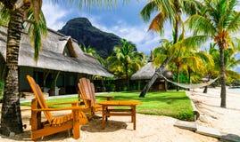 Χαλαρώνοντας διακοπές πολυτέλειας με τις καρέκλες και την αιώρα παραλιών Mauritiu στοκ εικόνα