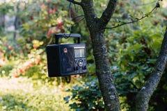 Χαλαρώστε στον κήπο με το ραδιόφωνο Στοκ φωτογραφία με δικαίωμα ελεύθερης χρήσης
