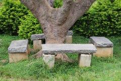 Χαλαρώστε τον πάγκο κάτω από το δέντρο Στοκ Φωτογραφίες
