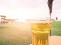 Χαλαρώστε το χρόνο, μπύρα κατά την άποψη κήπων το βράδυ Στοκ Εικόνα