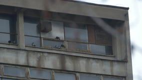 Χαλασμένα παλαιά παράθυρα φιλμ μικρού μήκους