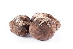 Χαλασμένες φωτογραφία πατάτες Κακά προϊόντα Στοκ Φωτογραφία