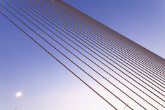 Χαλύβδινα σύρματα Στοκ Φωτογραφία