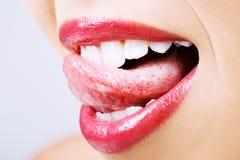 χείλια νόστιμα Στοκ Εικόνες