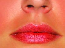 χείλια προκλητικά Στοκ εικόνες με δικαίωμα ελεύθερης χρήσης