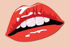 χείλια χρώματος Στοκ φωτογραφία με δικαίωμα ελεύθερης χρήσης