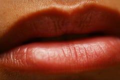 χείλια Στοκ εικόνα με δικαίωμα ελεύθερης χρήσης