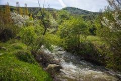Χείμαρρος των ορμητικά σημείων ποταμού κοντά στη λίμνη Prespa, Ελλάδα Στοκ εικόνα με δικαίωμα ελεύθερης χρήσης