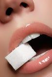 Χείλια της προκλητικής γυναίκας Χειλική σύνθεση ομορφιάς όμορφος αποτελέστε Αισθησιακό ανοικτό στόμα Το κραγιόν και το χείλι σχολ Στοκ Εικόνες