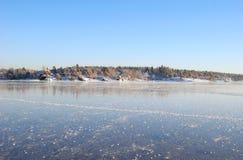 Χειμερινά δάση στο παγωμένο φιορδ Στοκ εικόνα με δικαίωμα ελεύθερης χρήσης