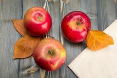 Χειμερινά κόκκινα μήλα σε έναν ξύλινο πίνακα Στοκ εικόνες με δικαίωμα ελεύθερης χρήσης