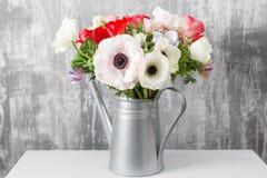 Χειμερινά λουλούδια Το Anemones σε ένα πότισμα βάζων μπορεί στεμένος σε έναν ξύλινο πίνακα Στην παλαιά γκρίζα τέχνη τοίχων υποβάθ Στοκ Εικόνες