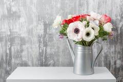 Χειμερινά λουλούδια Το Anemones σε ένα πότισμα βάζων μπορεί στεμένος σε έναν ξύλινο πίνακα Στην παλαιά γκρίζα τέχνη τοίχων υποβάθ Στοκ Εικόνα