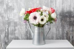 Χειμερινά λουλούδια Το Anemones σε ένα πότισμα βάζων μπορεί στεμένος σε έναν ξύλινο πίνακα Στην παλαιά γκρίζα τέχνη τοίχων υποβάθ Στοκ εικόνα με δικαίωμα ελεύθερης χρήσης