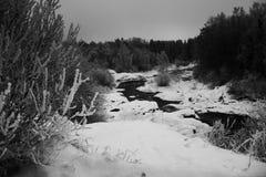 Χειμερινά ορμητικά σημεία ποταμού, misty ημέρα Στοκ Εικόνα