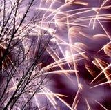 Χειμερινά πυροτεχνήματα στο Έντμοντον Στοκ Φωτογραφίες