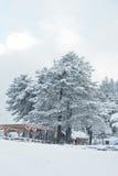 Χειμερινά σκηνή, σπίτι και gazebo κάτω από το μεγάλο δέντρο πεύκων στο χιόνι Στοκ φωτογραφία με δικαίωμα ελεύθερης χρήσης