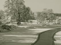 Χειμερινά τοπία Στοκ φωτογραφίες με δικαίωμα ελεύθερης χρήσης