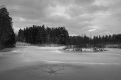 Χειμερινά φύση και τοπίο στη Σουηδία Σκανδιναβία Ευρώπη στοκ εικόνες με δικαίωμα ελεύθερης χρήσης
