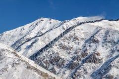 Χειμερινά χιονώδη βουνά με fir-trees στοκ φωτογραφίες
