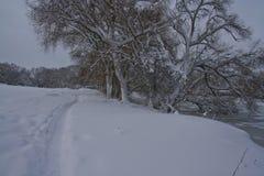 Χειμερινά snowdrifts στοκ εικόνες