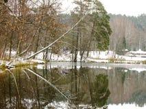 Χειμερινές αντανακλάσεις στοκ εικόνες
