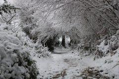Χειμερινές αψίδες χιονιού στο ουαλλέζικο τοπίο στοκ εικόνες με δικαίωμα ελεύθερης χρήσης