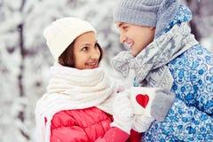 Χειμερινές ευθυμίες Στοκ φωτογραφία με δικαίωμα ελεύθερης χρήσης