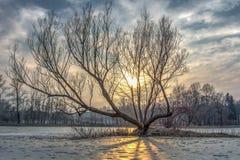 Χειμερινές ηλιοβασίλεμα και λίμνη Στοκ Φωτογραφία