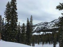 Χειμερινές μεγαλοπρεπείς απόψεις γύρω από τα μπροστινά δύσκολα βουνά Wasatch, χιονοδρομικό κέντρο του Μπράιτον, κοντά στο Σόλτ Λέ Στοκ εικόνα με δικαίωμα ελεύθερης χρήσης