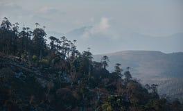 Χειμερινές ομίχλες στα βουνά των νότιων Ιμαλαίων στοκ φωτογραφία