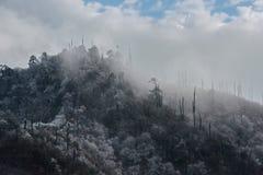 Χειμερινές ομίχλες στα βουνά των νότιων Ιμαλαίων στοκ φωτογραφία με δικαίωμα ελεύθερης χρήσης