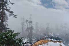 Χειμερινές ομίχλες στα βουνά των νότιων Ιμαλαίων στοκ εικόνα με δικαίωμα ελεύθερης χρήσης