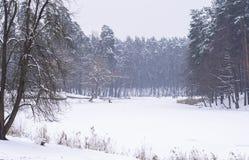 Χειμερινές δραστηριότητες Στοκ Εικόνα