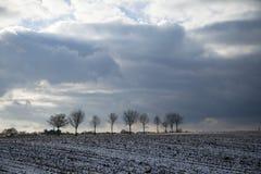 Χειμερινές σφαίρες στο άγονο καλλιεργήσιμο έδαφος στοκ εικόνα με δικαίωμα ελεύθερης χρήσης