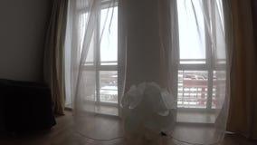 Χειμερινή άποψη παραθύρων με τα άσπρους έπιπλα, τους τοίχους, το λαμπτήρα και τους τυφλούς, που κυματίζουν στον αέρα απόθεμα βίντεο