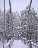 Χειμερινή άποψη σχετικά με τη γέφυρα που καλύπτεται στο χιόνι Στοκ φωτογραφία με δικαίωμα ελεύθερης χρήσης