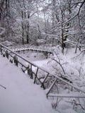 Χειμερινή άποψη σχετικά με τη γέφυρα που καλύπτεται στο χιόνι Στοκ Εικόνα