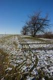 Χειμερινή άποψη σχετικά με Bonarka στην Κρακοβία Στοκ φωτογραφία με δικαίωμα ελεύθερης χρήσης