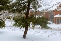 Χειμερινή άποψη των σπιτιών διαμερισμάτων Στοκ Εικόνα