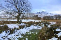 Χειμερινή άποψη Fach Arenig Στοκ φωτογραφία με δικαίωμα ελεύθερης χρήσης