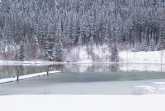 Χειμερινή λίμνη Στοκ φωτογραφίες με δικαίωμα ελεύθερης χρήσης