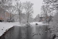 Χειμερινή λίμνη Στοκ Φωτογραφίες