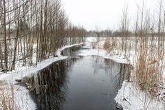 Χειμερινή αγροτική σκηνή με την ομίχλη και τον παγωμένο ποταμό Στοκ Εικόνα
