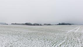Χειμερινή αγροτική σκηνή με την ομίχλη και τους άσπρους τομείς Στοκ φωτογραφία με δικαίωμα ελεύθερης χρήσης