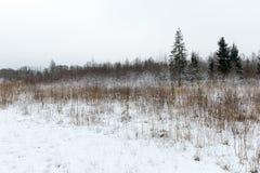 Χειμερινή αγροτική σκηνή με την ομίχλη και τους άσπρους τομείς Στοκ Εικόνες
