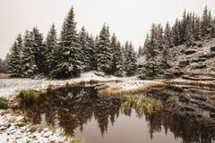 Χειμερινή αντανάκλαση στη λίμνη στοκ φωτογραφία με δικαίωμα ελεύθερης χρήσης