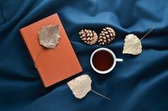 Χειμερινή ατμόσφαιρα φθινοπώρου Το φλυτζάνι του τσαγιού, ξεραίνει τα φύλλα, κώνοι πεύκων στο σκοτεινό σεντόνι Τοπ όψη Επίπεδος βά Στοκ φωτογραφία με δικαίωμα ελεύθερης χρήσης